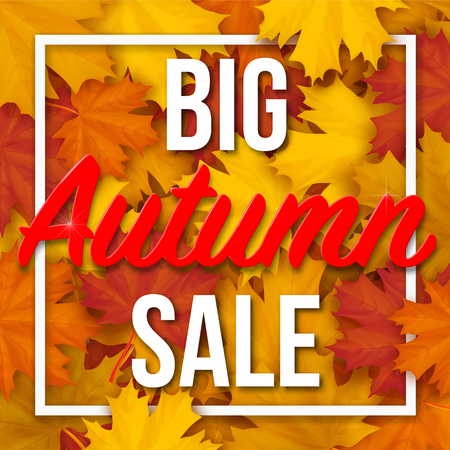 Frame with Big Autumn Sale text  on fallen maple leaves background. Realistic vector. Template for a seasonal sale, invitation or advertisement card.
