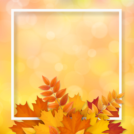 White frame with autumn fallen leaves. Background for seasonal sale offer or design element banner.