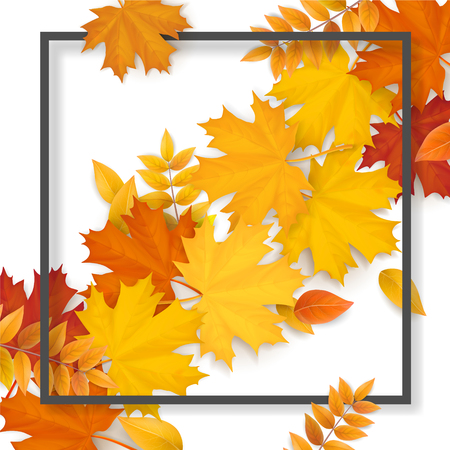 Black frame with autumn fallen leaves on white background. Background for seasonal sale offer or design element banner. Illustration