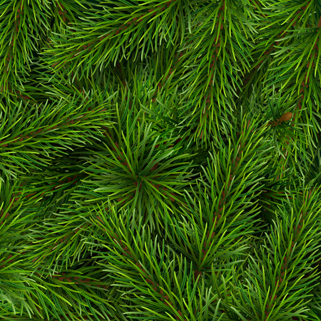 Christmas tree branches background. A template for a Christmas card or invitation to event.