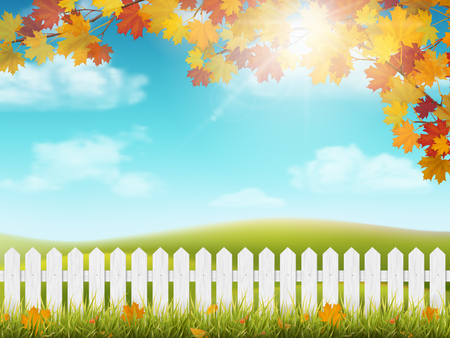 Autumn rural landscape with white wooden fence. Maple tree branch with colorful  leaves. Grass and fallen leaves. View on meadow with hills and sky with clouds and sun. Illustration