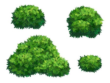 Set of green bush and tree crown of different shapes. Ornamental plant shrub for decorate of a park, a garden or a green fence.
