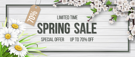 Spring sale frame chamomile wood blooming branch. Illustration
