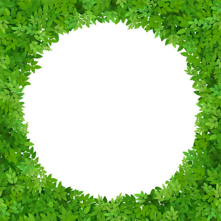 Circular frame of leaves with white space. Green foliage. Blank for advertising card or invitation.