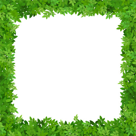 Square frame of leaves with white space. Blank for advertising card or invitation.