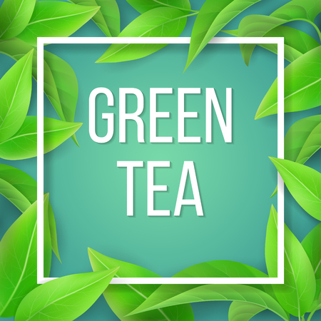 The banner of the tea leaves and frame with sample text. Natural illustration or packaging. Иллюстрация