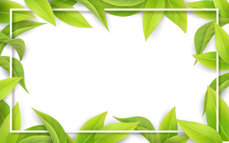 Green leaves on white background. Place for text. Nature border for spring seasonal card. Realistic gradient mesh.