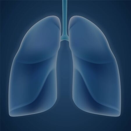 Human lungs on blue