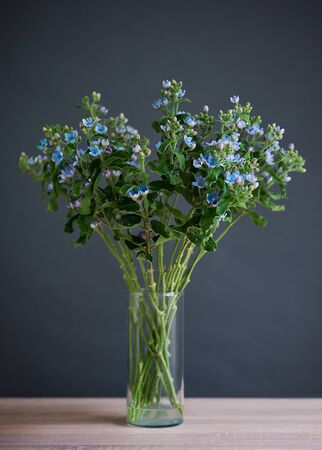 Beautiful bouquet of blue flowers in a transparent glass vase.