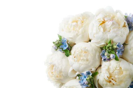 Background with beautiful bouquet of flowers peonies. White peonies and blue flowers on white background, isolated. Design for greeting card or invitation.