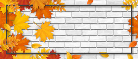 Autumn sale. Fallen maple leaves, frame and space for text on white brick wall background. Template for invitation, discount offer or flyer. Realistic illustration. Banco de Imagens