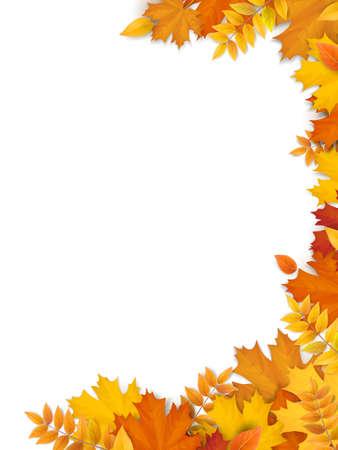 Autumn fallen leaves frame.