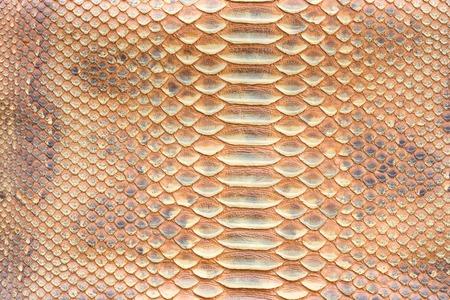 Genuine python snakeskin leather, snake skin, texture background. Stock Photo