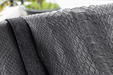 Reptile snake texture closeup, fashion zigzag snakeskin python picture. Stock Photo