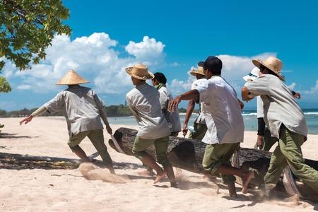 Paradise beach workers bringing a big tree on Bali island.
