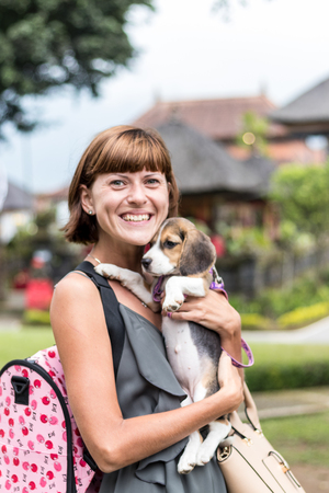 beagle terrier: Woman beautiful young happy with poppy beagle holding a dog in her hands. Balinese temple backgorund. Indonesia, Bali. Stock Photo