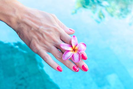 Plumeria frangipani flower in woman hand on a swimming poolbackground Stock Photo