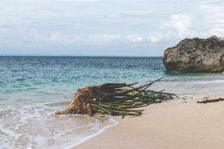 Untouched tropical beach on Bali island, Indonesia.