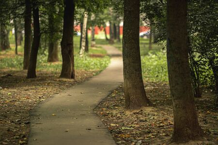 Autumn park in Russia. Nature background. Fall park. Landscape.
