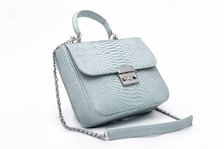Fashion luxury snakeskin python handbag isolated on a white background.