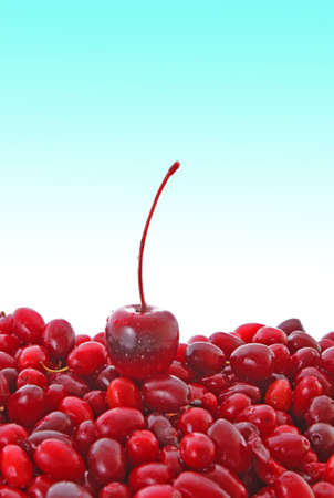 cherry and cranberries on blue background photo