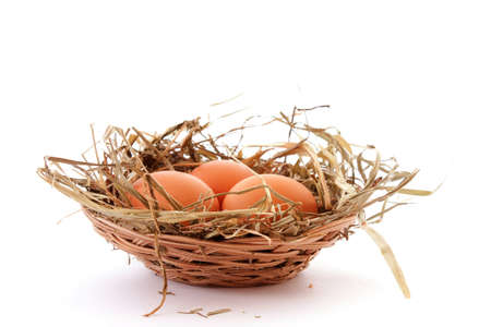 Three eggs in nest isolated on white photo
