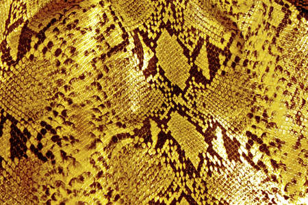 the reptile: black and yellow background in snake pattern style