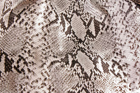 snakeskin: black and white background in snake pattern style Stock Photo