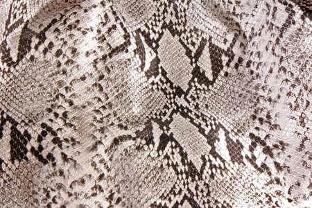 snake skin pattern: black and white background in snake pattern style Stock Photo