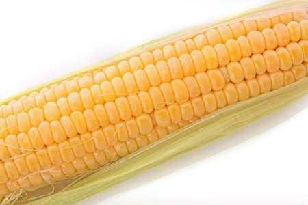 corn ear: Oreja de ma�z sobre fondo blanco  Foto de archivo