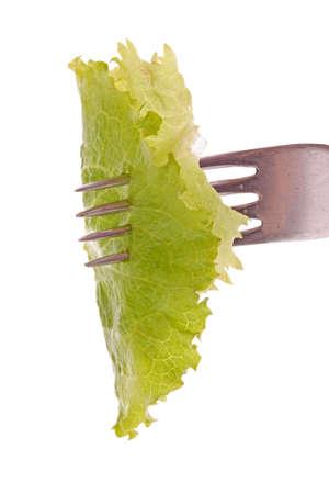 Forkful of lettuke isolated on white Stock Photo
