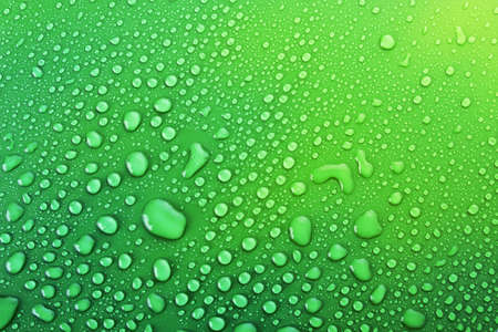 Green water drops background Stock Photo - 6479206