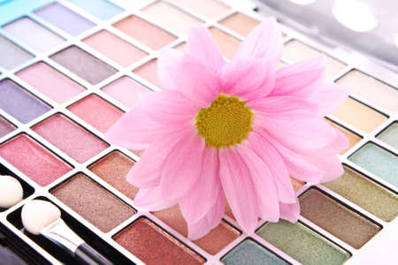 Big eye shadow kit and pink flower photo