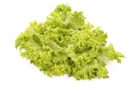 vibrat color: Green lettuce salad isolated   on white background