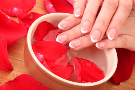 Hands with french manicure  relaxing in bowl of water with rose petals. Stock Photo - 8331549