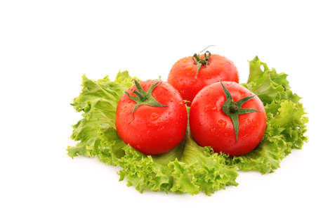 red tomato  vegetables   on the green salad  background photo