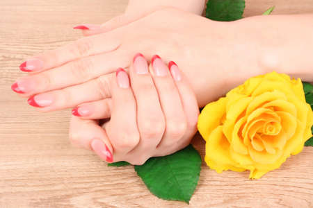 Woman hands with red french manicure  and yellow  flower photo