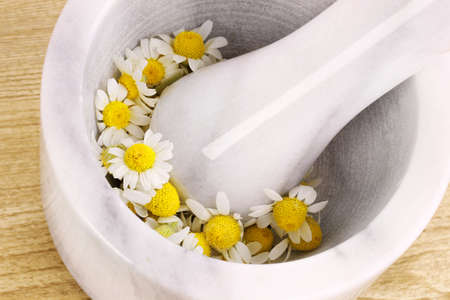 chamomile flowers in mortar Stock Photo - 9775009