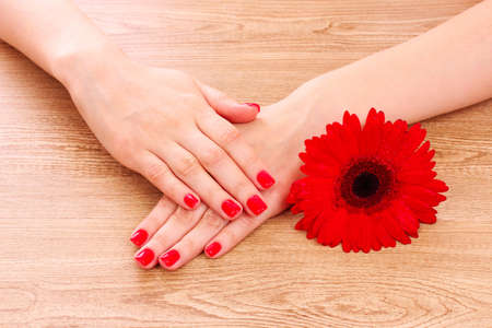 beautiful red manicure and  flower on a wooden background Stock Photo - 9887443