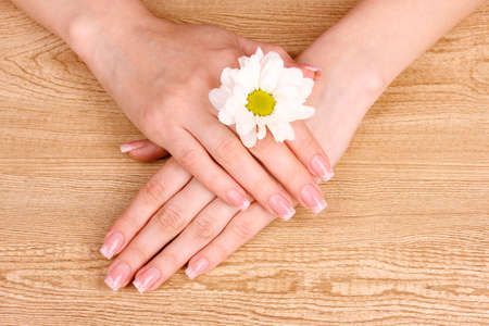 beautiful womans hands and  flower on  wooden background photo