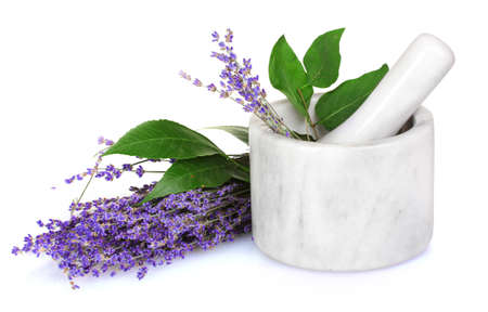 mortar and pestle medicine: Beautiful lavender in a mortar isolated on white