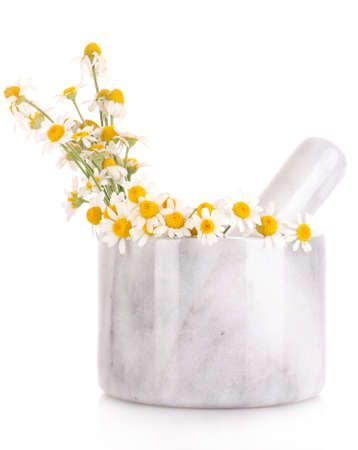 chamomile flowers in a mortar isolated on white Stock Photo - 9999217