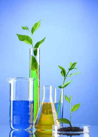 biological science: test tubes with plants on blue background