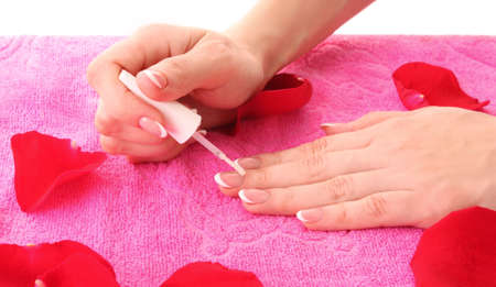 Beautiful woman hands with french manicure and rose petals on pink background Stock Photo - 10091063