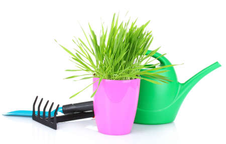 grass and garden tools isolated on white Stock Photo - 10202336