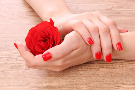 beautiful woman's hands and rose on wooden background Stock Photo - 10273777