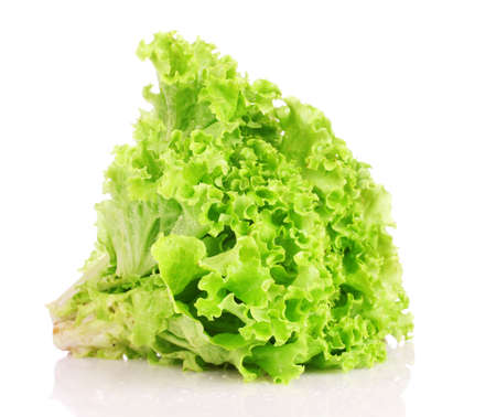 lettuce isolated on white photo