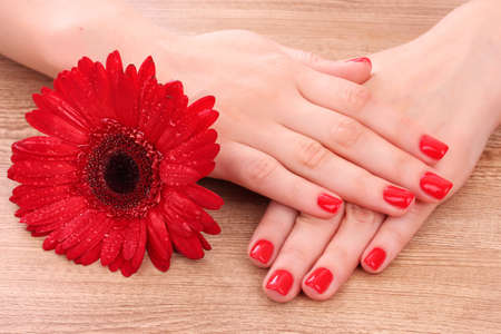 beautiful red manicure and  flower on a wooden background Stock Photo - 10321072