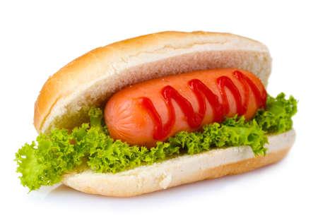perro comiendo: sabrosa hot dog aislado en blanco