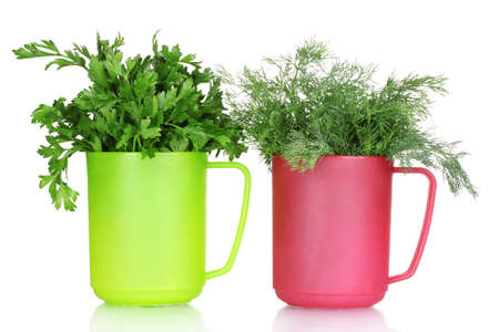 fresh parsley and dill in cups isolated on white Stock Photo - 10438000